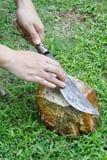 vässa för kniv Fotografering för Bildbyråer