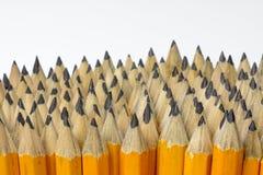 Vässade blyertspennor som står på deras slut Royaltyfri Bild