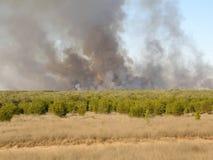 västra Australien broome Arkivfoton
