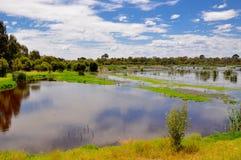 Västra Australien våtmarker arkivfoton