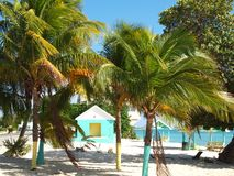 Västra fjärd för storslagen strand för Cayman offentlig Royaltyfria Foton