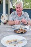 Västra höglands- terrierwestiehund som håller ögonen på den pensionerade mannen att välja på bo royaltyfri bild