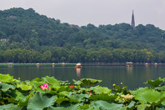 västra hangzhou lake Fotografering för Bildbyråer