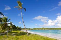 Västra Indies som är karibiska, Antigua, St Philip, Half Moon Bay arkivbild