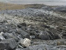 Västra Irland Arkivbild