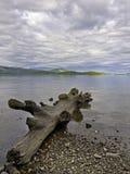 Västra kuster av Loch Lomond Royaltyfri Bild