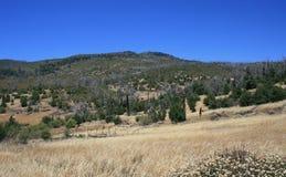 Västra Mesa Royaltyfria Foton