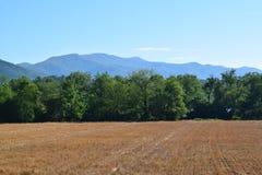 Västra NC-bondefält av klippt hö Arkivbilder