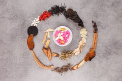 Västra och traditionell spiral för kinesisk medicin Royaltyfria Foton