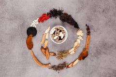 Västra och traditionell spiral för kinesisk medicin Arkivfoton