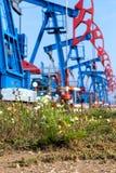 västra pumpar för olja för dagjuni kazakhstan månad Arkivfoto