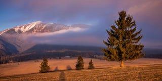 Västra Tatras. royaltyfri fotografi