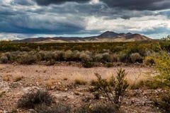 Västra Texas Landscape av ökenområde med kullar Fotografering för Bildbyråer