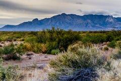 Västra Texas Landscape av ökenområde med kullar Arkivbilder