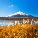 västra vinter för 100km fuji japan monteringstokyo sikt Royaltyfri Bild