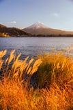 västra vinter för 100km fuji japan monteringstokyo sikt Arkivbild