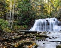 Västra Virginia Waterfall i tidig höst Royaltyfria Foton