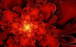 Vätskeröd blomma Royaltyfri Bild