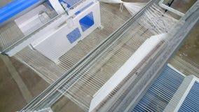 Väva utrustning hägrar rader av gör fiber tunnare på en textilväxt stock video
