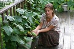 växande grönsaker Royaltyfria Bilder