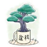 Växande insida för bonsaiträd en råna Royaltyfri Foto