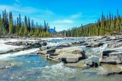Växande nedgångar och stor horn- flod, Crescent Falls Provincial Recreation Area, Alberta, Kanada Royaltyfri Foto