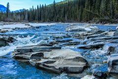 Växande nedgångar och stor horn- flod, Crescent Falls Provincial Recreation Area, Alberta, Kanada Royaltyfri Bild