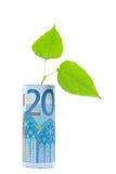 växande pengar Arkivbild