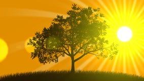 Växande träd med soluppgång royaltyfri illustrationer