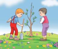 Växande växtfrö med ungar Arkivbilder
