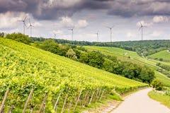 Växande vin och windpower i Franconia Arkivfoto