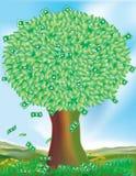 växer trees för pengar inte Arkivfoton