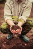 Växt. royaltyfri foto