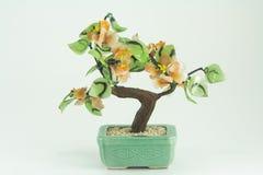 växt Royaltyfri Fotografi