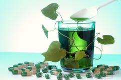 Växt- alternativ medicin Fotografering för Bildbyråer