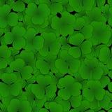 växt av släkten Trifolium låter vara modellen seamless Royaltyfria Bilder