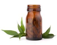 Växt- drogkapslar i brun glasflaska. Alternativ medicin Arkivbild