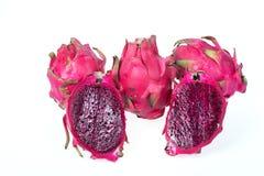 växt för pitaya för frukt för familj för cactaceaekaktusdrake Royaltyfri Bild