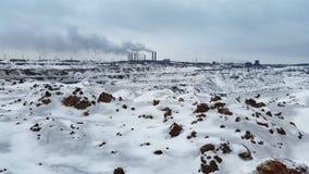 växt Förorening av miljön Arkivfoton