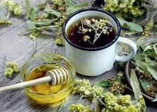 växt- honungtea för kopp medicinal örtar bot för influensa och förkylning arkivbild