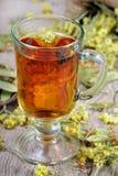 växt- honungtea för kopp medicinal örtar Närbild bot för influensa och förkylning arkivbild