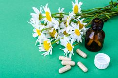 Växt- kapslar, medicinska preventivpillerar av kamomillen royaltyfri foto