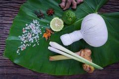 Växt- kompressboll för thai populär massage- och brunnsortbehandling arkivfoton