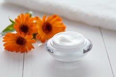 Växt- kosmetisk ancekräm med naturlig organisk fuktighetsbevarande hudkräm för calendulavitamin arkivfoton