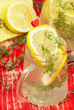 Växt- lemonad Arkivfoto