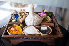 Växt- massagebrunnsort Royaltyfria Bilder