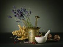 växt- medicin arkivbilder