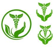 växt- medicin royaltyfri illustrationer