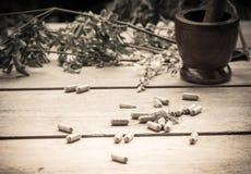 Växt- medicin i kapseln Royaltyfria Bilder