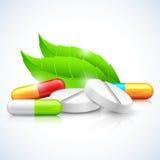 Växt- naturlig medicin vektor illustrationer